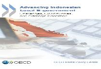 Advancing Indonesian Local E-government